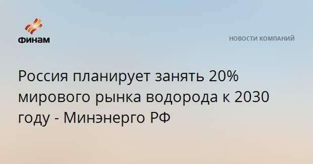 Россия планирует занять 20% мирового рынка водорода к 2030 году - Минэнерго РФ