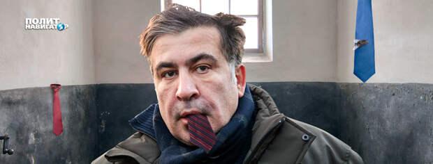 «Купил билет в тюрьму». Эксперты не понимают, что происходит в голове у Саакашвили