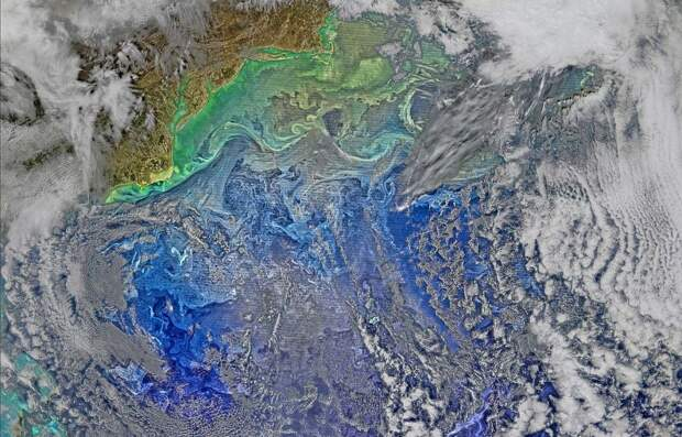 Гольфстрим смещается на восток вдогонку за северным полюсом