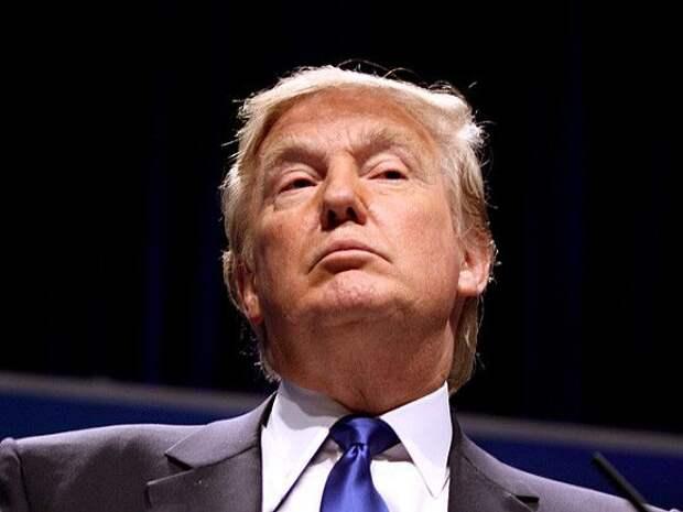 «Засунул мне в рот свой язык и ощупал»: модель обвинила Трампа в домогательствах