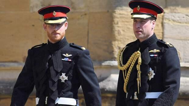 Принцы Гарри и Уильям отказались забыть обиды ради открытия памятника Диане