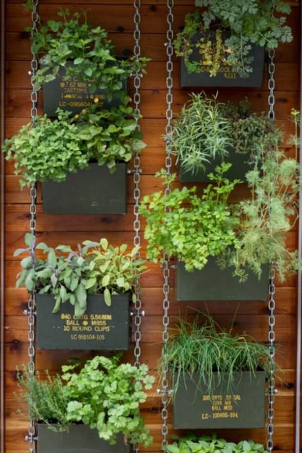 вертикальный сад из ящиков