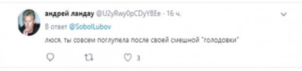 Превращение в дуру завершено: политолог жестко раскритиковал Соболь