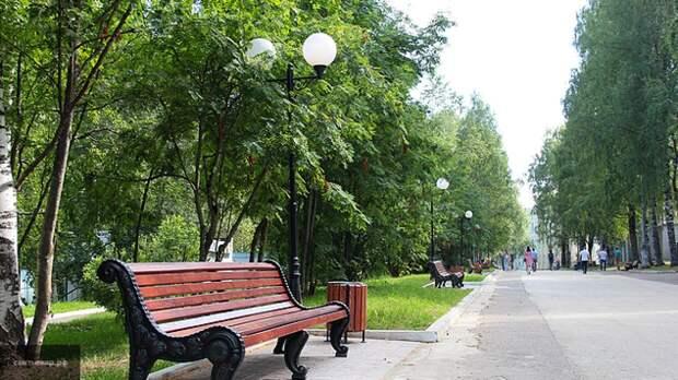 """Экологические проблемы стали темой первого экспертного совета """"Родины"""" в Сыктывкаре"""