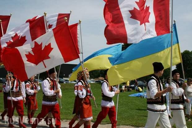 Украинцы создали Канаду, — администрация Порошенко | Русская весна