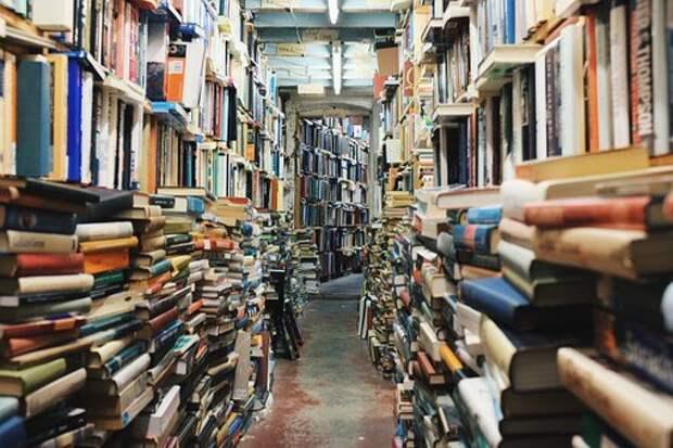 В библиотеке на Римского-Корсакова пройдет день открытых дверей