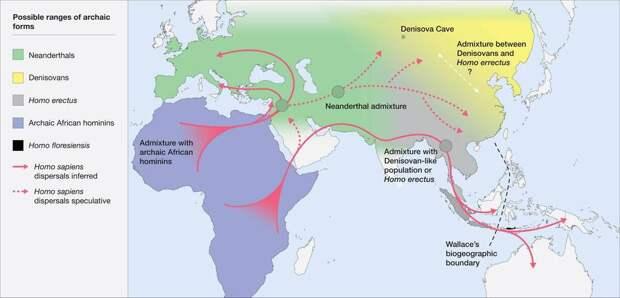 Экологические зоны обитания древних людей