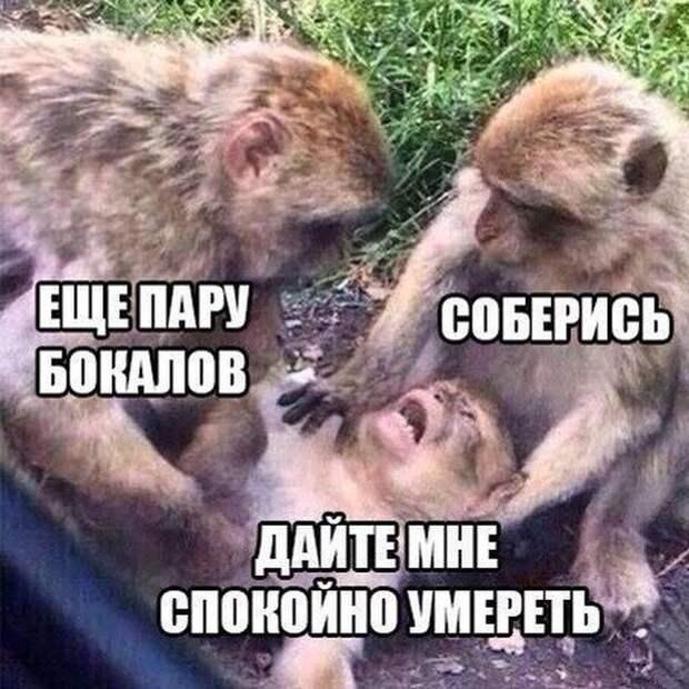 1482790579_25