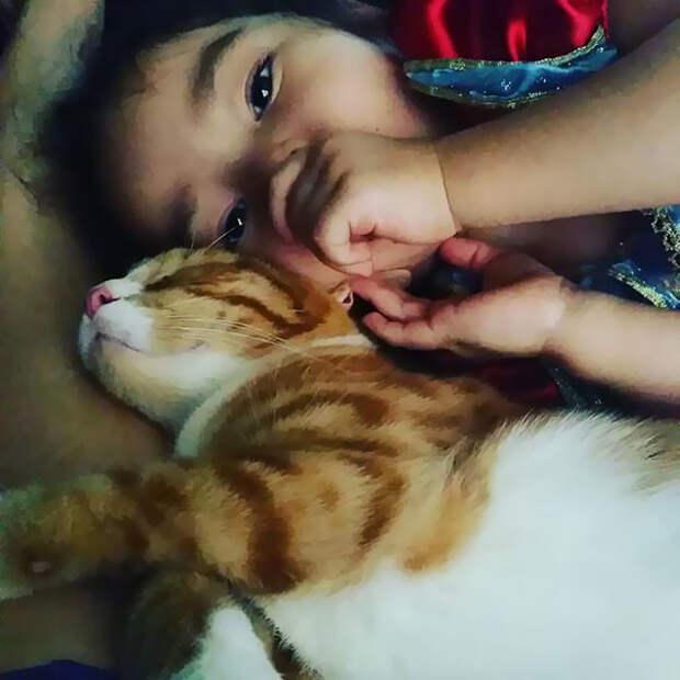 Малышка любит кошек, а они - ее девочка, дружба, кот