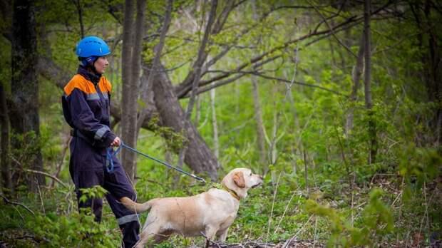 фото с  classpic.ru