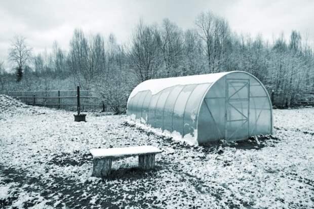 что делать в огороде в январе