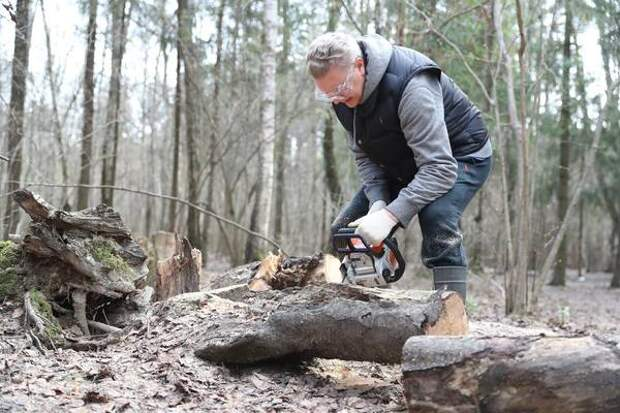 Андрей Иванов вместе с жителями привел в порядок территорию Подушкинского леса в микрорайоне Трехгорка