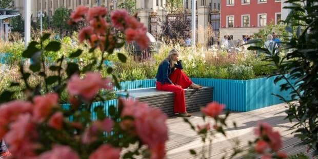 Собянин рассказал о возвращении в Москву  фестивалей в ограниченном режиме