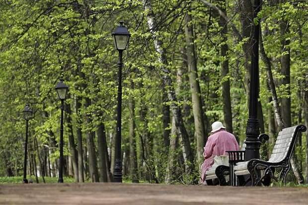 Эсеры внесли в Госдуму законопроект  об отмене пенсионной реформы