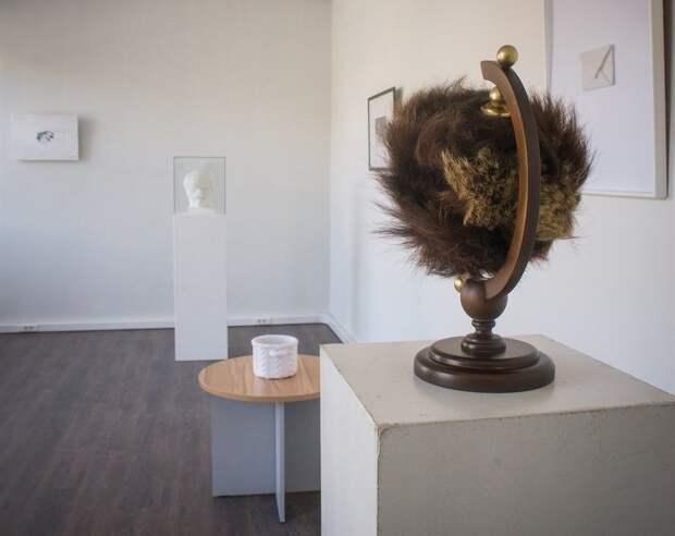 В Томске открывается выставка «Страшные Сибирские Сны» Наташи Юдиной