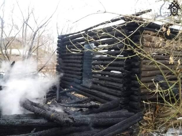 Тело мужчины обнаружили в сгоревшем заброшенном доме в Большеболдинском районе