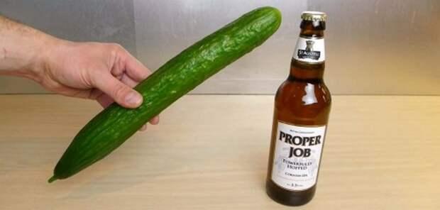 Как открыть бутылку пива… огурцом
