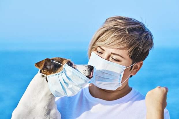 70 жителей Удмуртии заразились коронавирусом, 74 – выздоровели