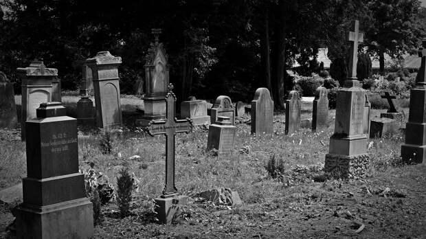 50 млн в могиле: в Краснодаре на кладбище нашли тайник с крупной суммой денег