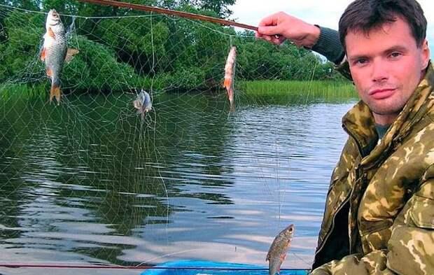Экран для ловли рыбы своими руками