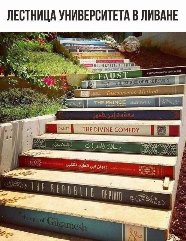 Лестница к знаниям