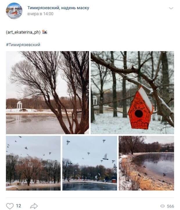 Фото дня: подборка зимних фото из парка «Дубки»