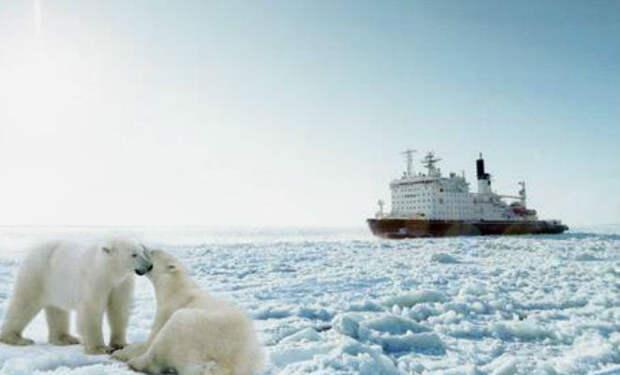 Атомный ледокол Таймыр: анатомия стального покорителя Арктики