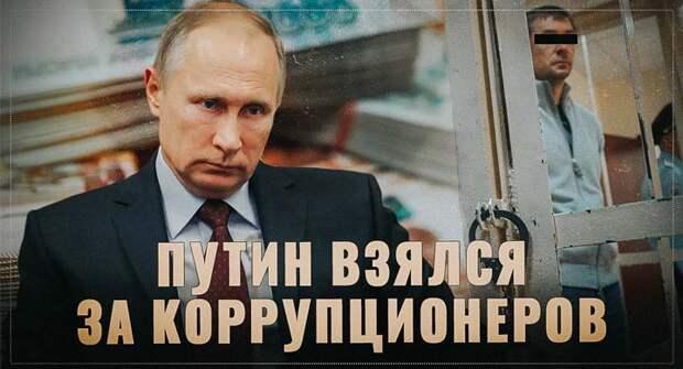 Путин взялся за коррупционеров! Куда уйдут изъятые неподтвержденные накопления?