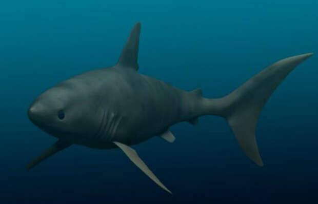 Невероятные монстры, правившие океаном