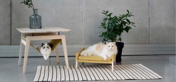 Дизайнеры придумали очень милую мебель для кошек. Вот 3 фото