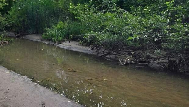Пивоваренную компанию в Мытищах оштрафовали за выброс сточных вод в реку