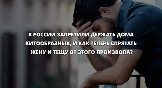 Анекдоты дня 29.06.2019
