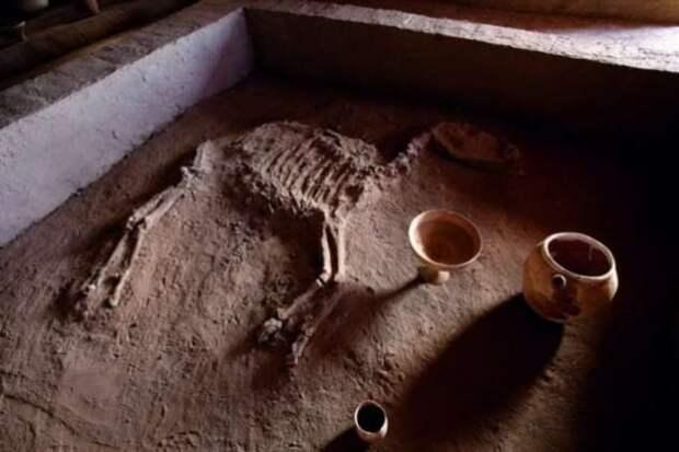 Российские учёные открыли древнее царство Маргуш (6 фото)