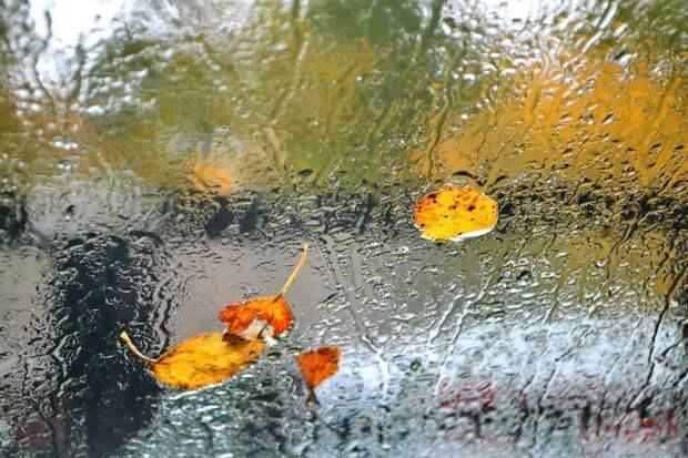 Небольшие дожди пройдут в Удмуртии в четверг