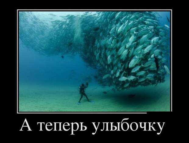 1460577422_24