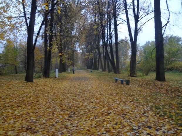 Осенняя грусть.