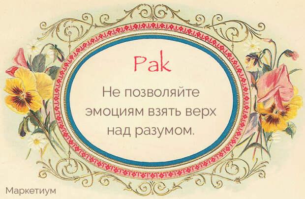 chncdhahr0chm6ly9tyxjrzxrpdw0ucnuvd3aty29udgvudc91cgxvywrzlziwmtyvmtevmza5zjy5mdvlm2fmmtzlzgu0mdg3ztyym2u1yjqwowquanbn-prx-88ee9815