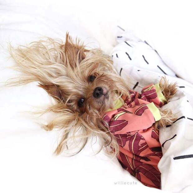 Утром, после сна.