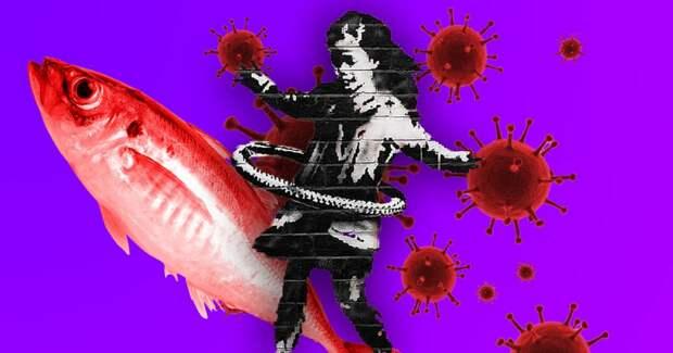 5 новостей выходных: массовая гибель рыбы в Калмыкии и новая работа Бэнкси