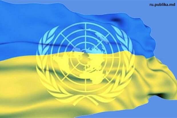 Опубликованный отчет ООН вскрыл то, что так сильно пыталась утаить Украина в Донбассе