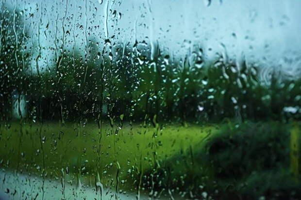Похолодание и дожди ожидают сибиряков в день памяти Иова Горошника 19 мая 2021 года