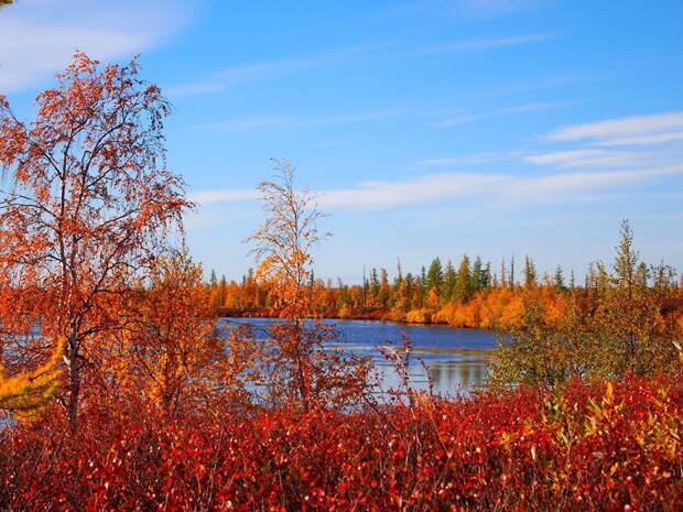 Завораживающие осенние пейзажи России