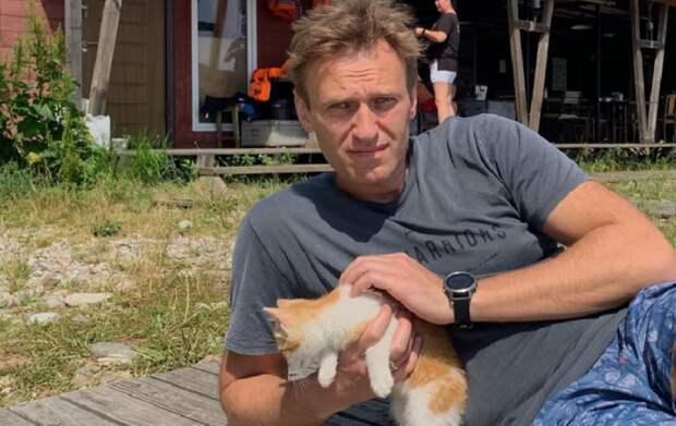 Немецкий политик рассказал, кому выгодно отравление Навального