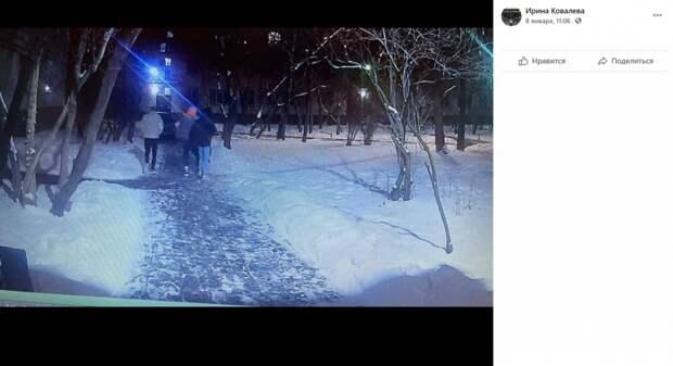 Елка на Ташкентской пала жертвой ночных хулиганов