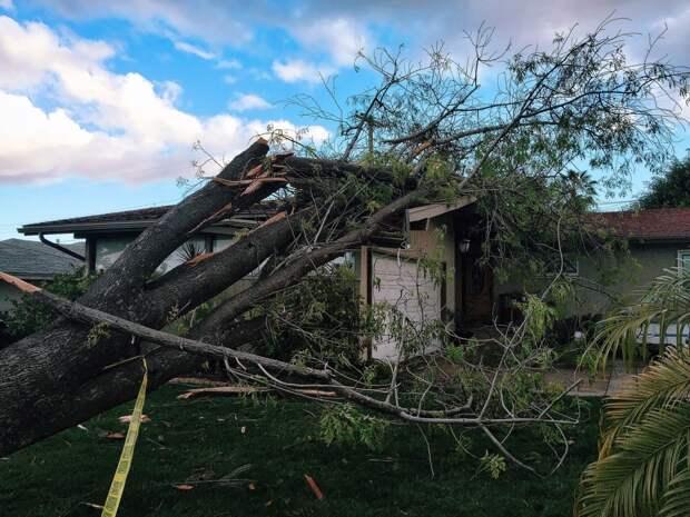 Жителей Удмуртии предупредили об усилении ветра