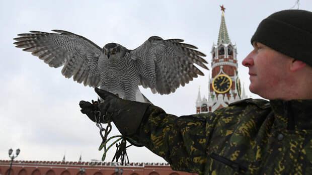 Как служат кремлёвские ястребы?