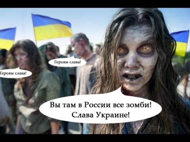 Скоро за «славуукраине» будут бить морду, — мнение