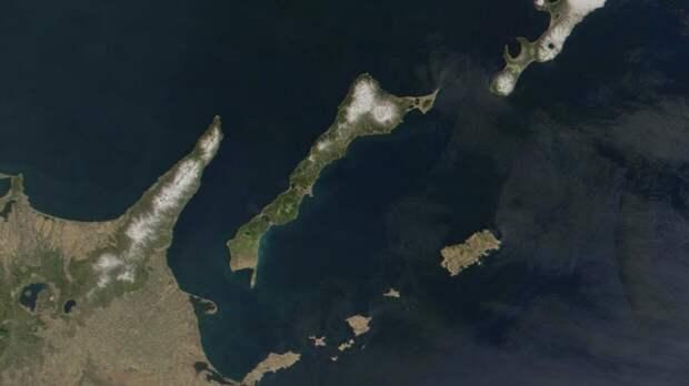 В МИД РФ прокомментировали сообщения Kyodo о планах СССР передать два острова Японии