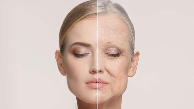 Ученые определили три этапа старения человека