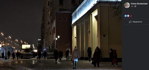 Фото дня: вечерняя фотокарточка Сокола